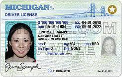 Ids Identification Scannable Fake Buy Michigan Id
