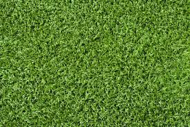 artificial turf texture. Artificial Turf For My Backyard! Texture