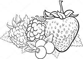 Illustrazione Di More Da Colorare Illustrazione Di Frutta Bacca
