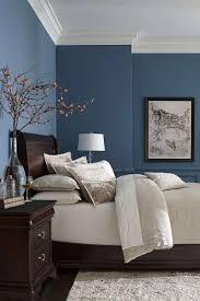 Oltre 25 fantastiche idee su Pareti camera da letto blu su ...