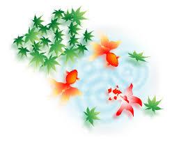 暑中見舞いに無料イラストを使おう金魚の絵柄で涼しげに 年賀状