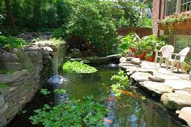 koi pond design maintenance