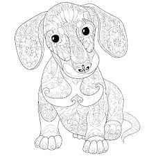 Dachshund Coloring Pages Dachshund Coloring Pages Page Dog Art Of