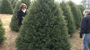 NJ Farms Where You Can Cut Down Your Own Christmas Tree 2013 Christmas Tree Cutting Nj