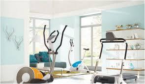 home gym decorating ideas furniture mommyessence com