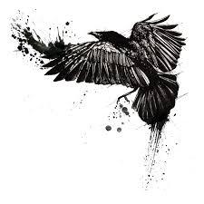 Tattoo Common Raven Trash Polka Crow Raven Png Download 1200