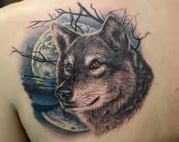волк одно из таинственных высокоорганизованных вконтакте