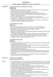 Vp Marketing Manager Resume Samples Velvet Jobs