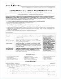 Standard Resume Template Word Mesmerizing Top Resume Template Awesome Software Resume Template R Engineer Good
