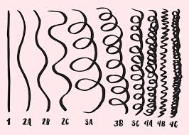 Hair Texture Chart Black Hair Curly Hair Types Chart Textures Guide The Ultimate Hair