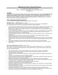 Marketing Director Resume Resume Sales And Marketing Manager Sample Doc Best Executive 41