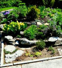 full size of backyard ideas rock garden designs front yard design examples