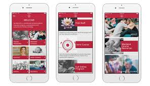 Create Birth Plan Online Online Program Shebirths Com