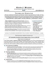 Executive Resume Writing It Director Cio Sample Resume Executive Resume Writer
