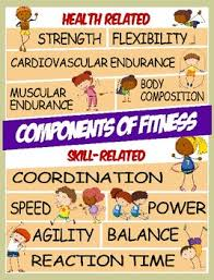 Physical Education Skill Health Related Components Of Fitness Posters