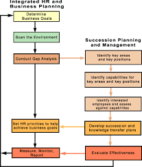 succession planning and management steps link between the succession planning and management process and the integrated hr and business planning process