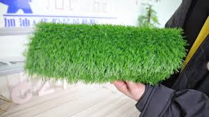fake grass carpet. Outdoor Artificial Grass Turf Leisure Carpet Price Fake