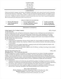 Professional Resume Writing Service Resume Samples Professional