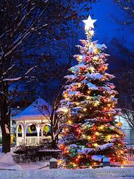 Exquisite Decoration Outdoor Christmas Tree Lights Best 25 Exterior Ideas  On Pinterest
