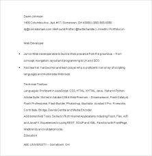 Junior Java Developer Resume Summary Developers Spacesheep Co