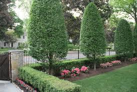 Small Picture Landscape Garden Design Birmingham izvipicom