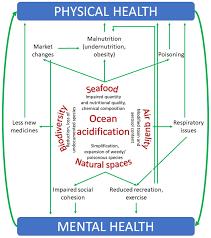 Located in porto moniz, aqua natura madeira hotel is near the beach. Ijerph Free Full Text Ocean Acidification And Human Health Html