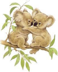 """Résultat de recherche d'images pour """"Gif australie koala"""""""