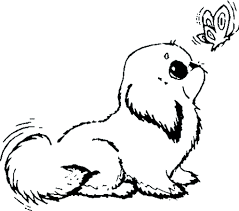 Small Picture Coloring Pages Cute Animal Coloring Pages To Print Coloring Page