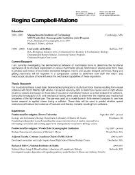 Microsoft Word Resume Wizard Free Resume Example And Writing