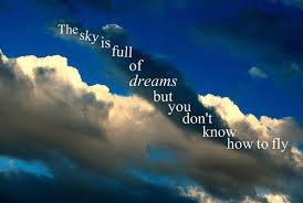 Dream To Fly Quotes Best Of The Sky Is Full Of Dreams But You Don't Know How To Fly Unknown