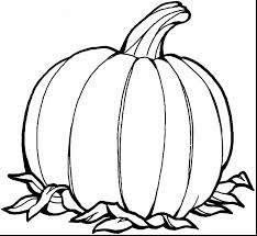 Small Picture Extraordinary pumpkin printable coloring pages with pumpkin