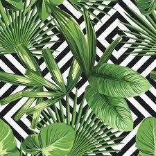 Palm Tree Wallpaper Sand Palm Trees Summer Desktop Wallpaper Palm