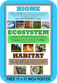 What Are Biomes What Is A Biome Biomes Desert Ecosystem Habitats