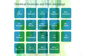 Plant Nutrient Interaction Chart The Ratio Between Plant Nutrients Explained Canna Uk