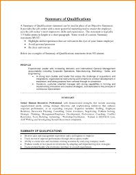 Resume Summary Statement Example Resume Summary Statement Examples