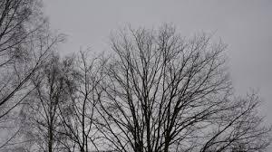 Bildresultat för grå himmel