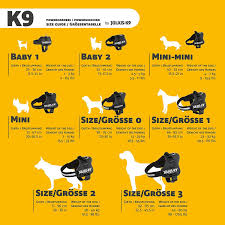 Julius K9 Size Chart Best Dog Harness And Lead For Staffies In 2018 Staffy