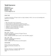 short simple resume examples short resume example resume ideas