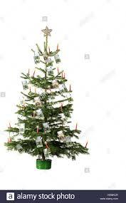 Weihnachtsbaum Banknoten Weihnachten Yule Flut Für
