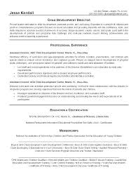 Child Care Resume Objective Resume Example Timeless Gray Ideas Of Amazing Child Care Provider Resume