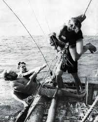 Image result for Kon-Tiki
