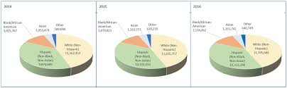 Us Population By Race 2016 Pie Chart Black Owned Businesses In Texas Metro Areas 2014 Through