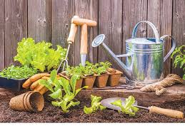 apply for school garden grant program