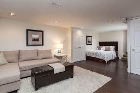 basement apartment ideas. Contemporary Basement Basement Apartment Ideas Pictures New Home Design  The And R