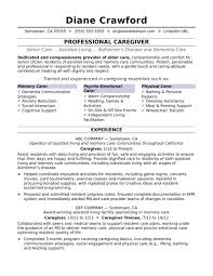 Caregiverume Sample Monster Com It Support Analyst Examples