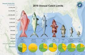 Federal Regulations Gulf Of Mexico Fishery Management Council