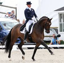 Patrik Kittel & Delaunay Lead Sweden to Top of Falsterbo Nations Cup 1st  Round Standings   Nations cup, Dressage horses, Dressage