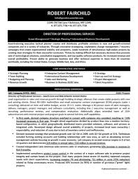 Of Professional Services Resume