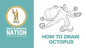 Small Picture How to Draw an Octopus YouTube