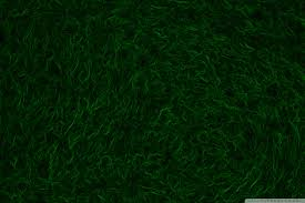 dark green carpet texture. Beautiful Green Dark Green Carpet Texture Tablet Texture Throughout Dark Green Carpet Texture